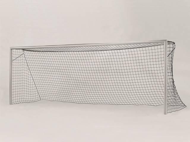"Haspo Fußballtor ""Kompakt Plus"" - 7,32 x 2,44 m, in Bodenhülse, TÜV geprüft"