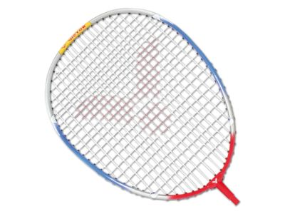 Victor Badmintonschläger Training